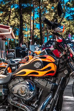 show bike monta 2018-135
