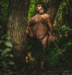 Bear des bois