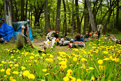 Campamento Japones