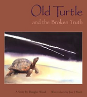 old turtle and the broken truth, douglas wood