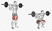 kisspng-squat-barbell-exercise-weight-tr
