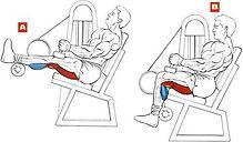 cadeira-flexora.jpg