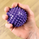 Thumbnail: Spikey massage ball (single)