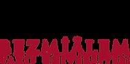 Bezmiâlem_Vakıf_Üniversitesi_logosu.png