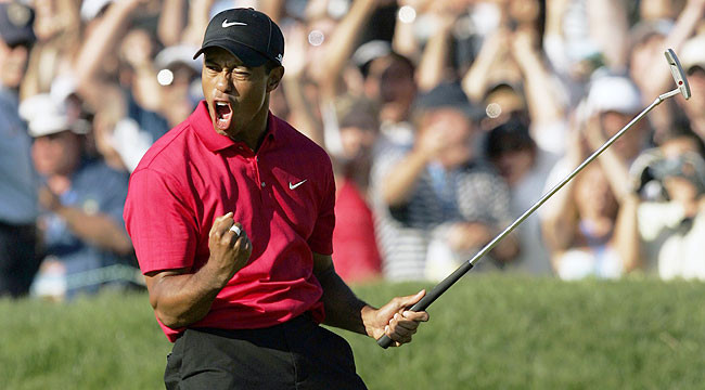 Tiger woods Passion