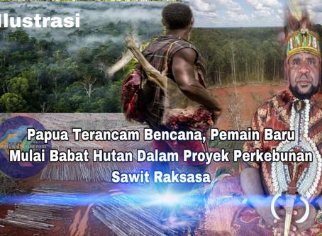 """""""Papua Terancam Bencana"""", Pemain Baru Mulai Babat Hutan Dalam Proyek Perkebunan Sawit Raksasa"""