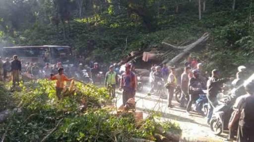 Jalur Arus Balik Mudik Banyuwangi-Jember Terisolasi Akibat Banjir Bandang