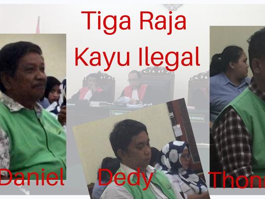 Tiga Bos Pemilik 19 Container Isi Kayu Ilegal Divonis 1,6 Penjara
