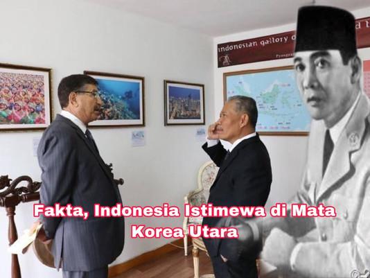Fakta, Indonesia Istimewa di Mata Korea Utara