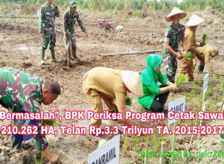 """""""Bermasalah"""" BPK Periksa Program Cetak Sawah 210.262 HA yang Telan Rp.3.3 Trilyun"""