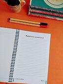 Caderno Terapeutico O Poder do Permita-se