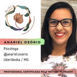 Anariel Ferreira