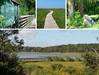 An Environmental Vacation: 5 Cape Places to Visit for the April Break