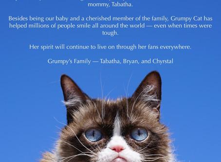 """Binlerce Hatıra Bırakan """"Huysuz"""" Kedi Hayata Gözlerini Yumdu"""