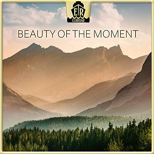 The beauty of the moment - Daniel Elias