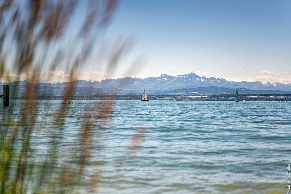 Website_Bodensee_008.jpg