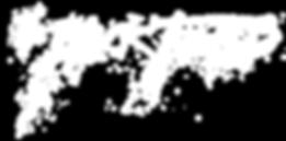 BF logo_HZ WHITE.png