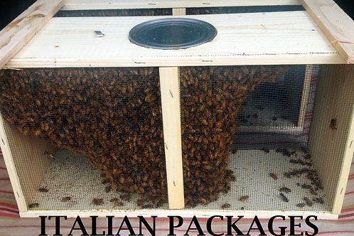 3 lb. Package of Bees w/Italian Queen
