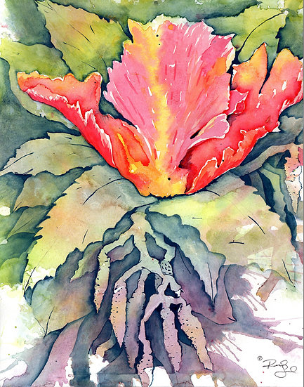 Unfringed Tulip