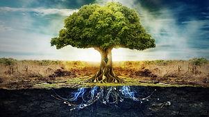 subconscious tree.jpg