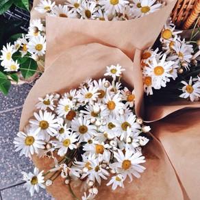 Nunca ganhei flores do meu amor.