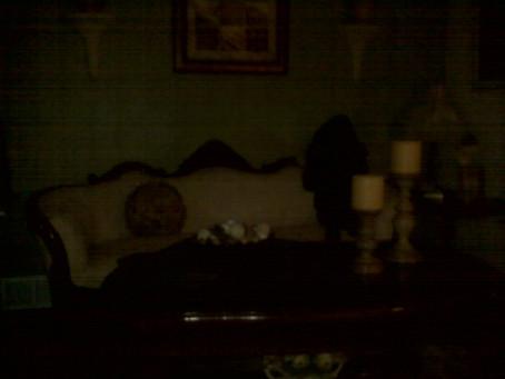 The Dark Lady on the Sofa