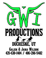 GWI Productioins Logo.PNG