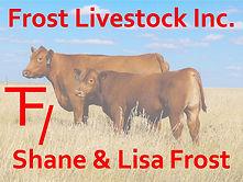 Frost Livestock Bull Sponsor.jpg