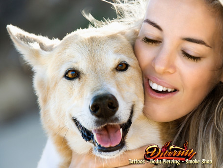 Benefits of CBD Dog Treats