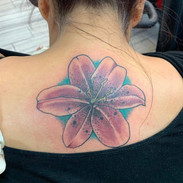 Tatto By Tommy