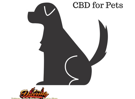 Ways to Give your Dog CBD