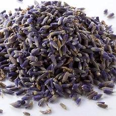 Captain_Vapour_Dried_Lavender_3-570x570.