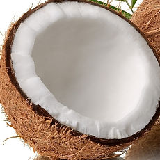 coconut_edited_edited.jpg