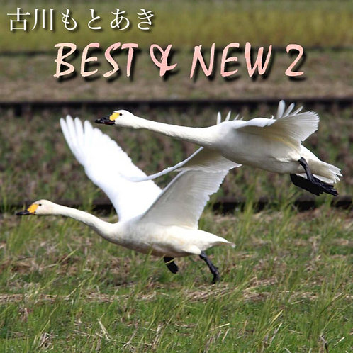 BEST & NEW 2 -M'sアート12周年記念アルバム-