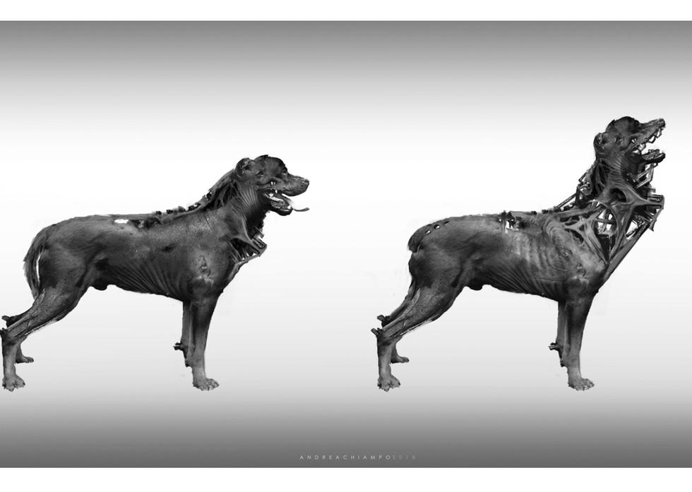 Dog_concept_Andrea Chiampo_1.jpg
