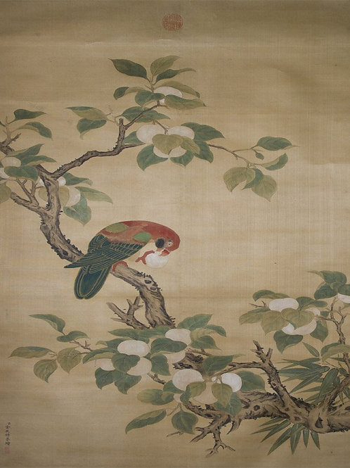 Jin Tingbiao Qing Dynasty Parrot Hanging Scroll