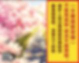 Screen Shot 2018-11-21 at 11.34.55 PM.jp