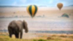 elephant-and-hot-air-balloon.jpg