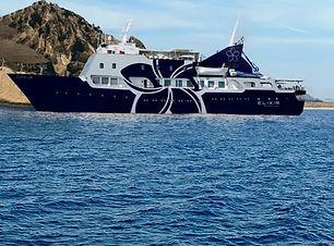 Elixr-Cruises-Elysium-Ship-.jpg