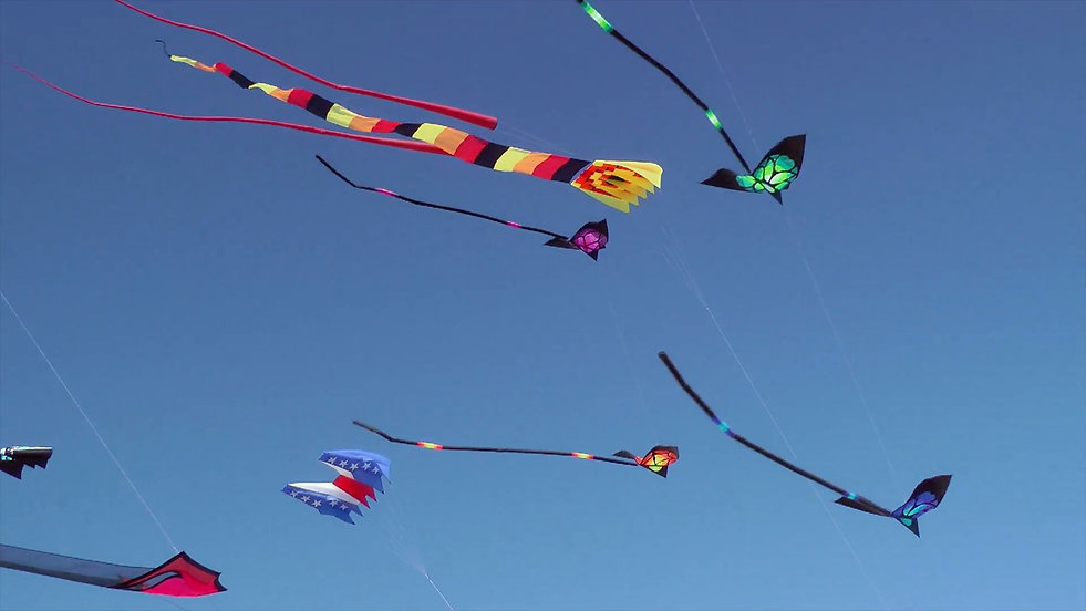 kites-flying-against-blue-sky_ejpuy-w8__