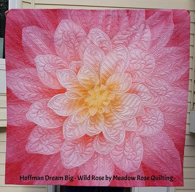 Challenge 2017/18 - # 42, Hoffman Dream Big - Wild Rose