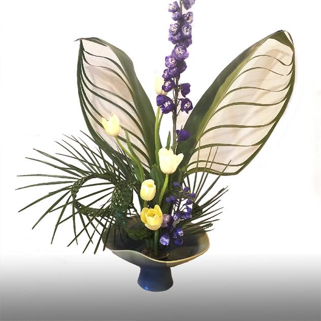 butterfly_modify.jpg