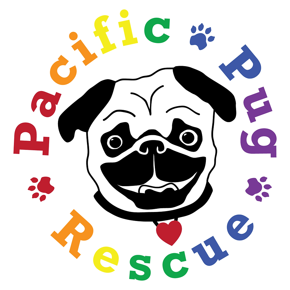 dog rescue, dog charity, non-profit, pug rescue