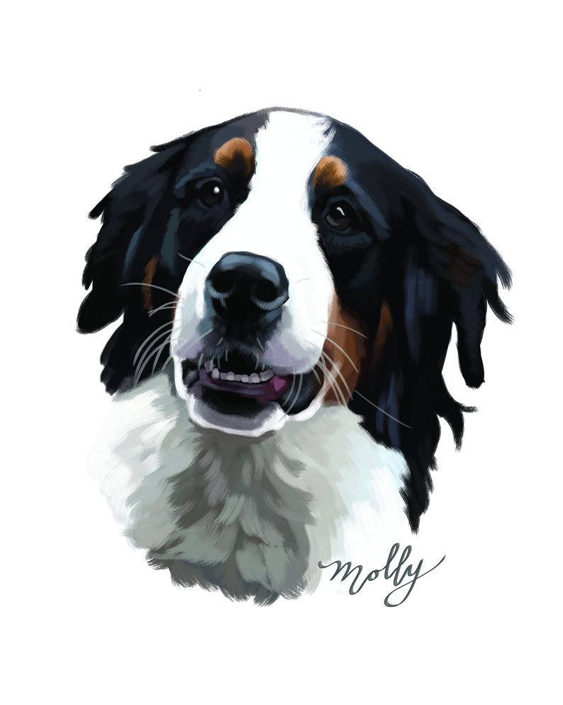 digital art, pet portrait, custom dog art