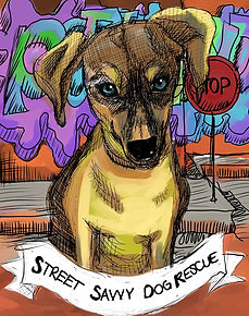 street_savvy_dog_rescue.jpg