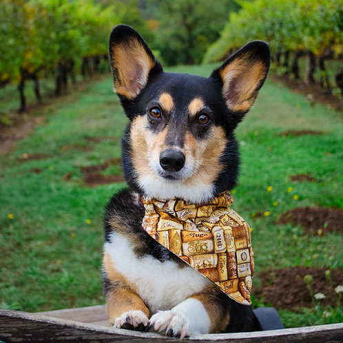 Wine/Beer/Cocktails Dog Bandana