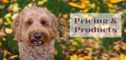 pricing and products_header.jpg