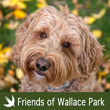friends of wallace park graphic.jpg