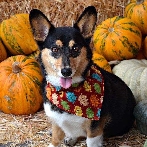 Fall Dog Bandana