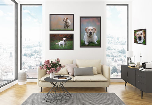 living room with gallery.jpg